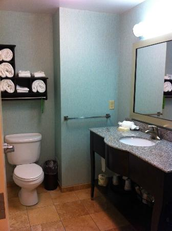 Hampton Inn & Suites Wilder: Bathroom