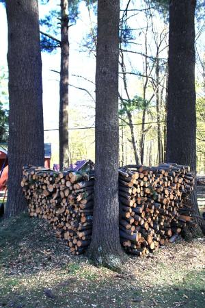 Phoenicia Lodge : Wood for the firepit