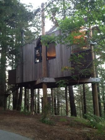 Post Ranch Inn: Luxury treehouse