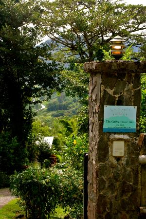 La Montana y el Valle Coffee Estate Inn: view as you come into the driveway