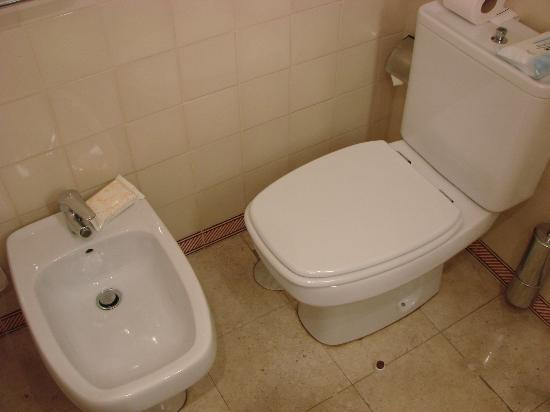 Axis Vermar Conference & Beach Hotel: Toilet set-up in rooms facing car park