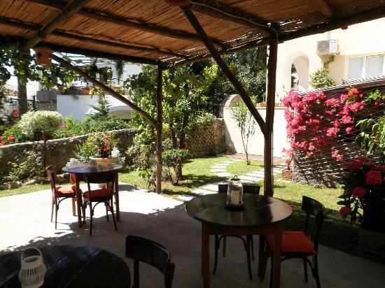 Villa Aida: giardino 