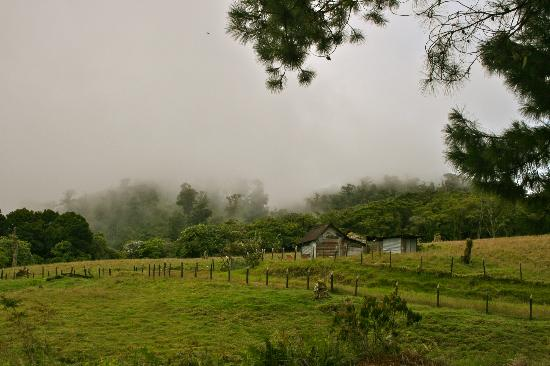 La Montana y el Valle Coffee Estate Inn: hiking in the national park close to the inn