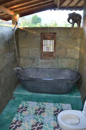 Sawah Indah Villa: Super Deluxe room shower