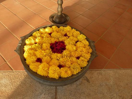 Le jardin et sa fontaine - Picture of Maison Gascon, Pondicherry ...