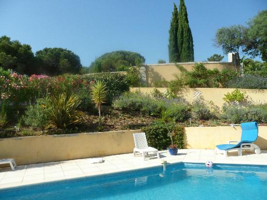 Le Petit Ramses : vue de la piscine