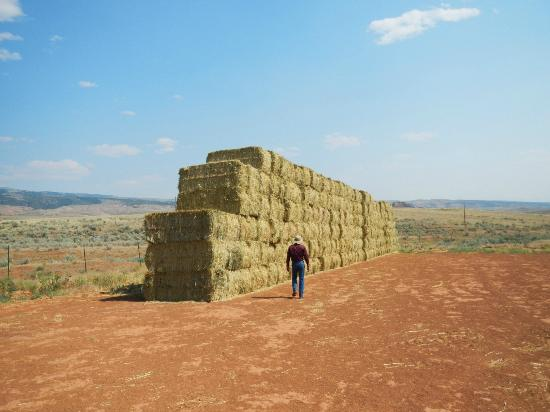 Red Reflet Ranch: Hay stacks on the ranch