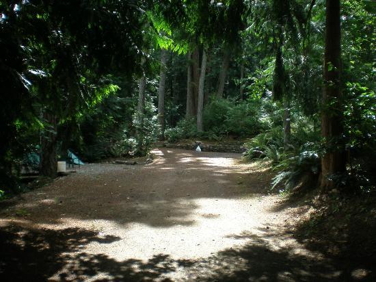 Garden Faire Campground : Entering the Garden of Eden