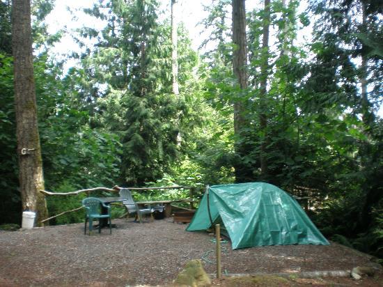 Garden Faire Campground : Smaller Campsite Area