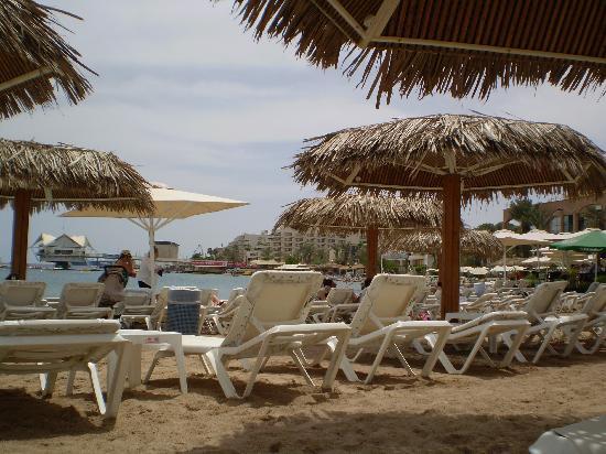 Americana Hotel : Beach at Eilat