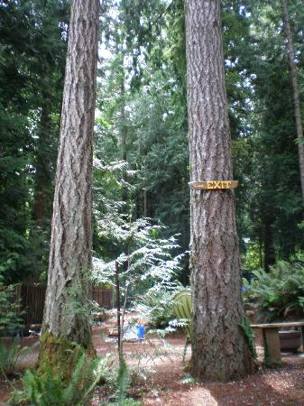 Garden Faire Campground: Surrounded by Beautiful Forested Areas