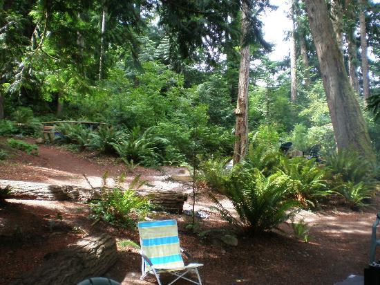 Garden Faire Campground: Trails