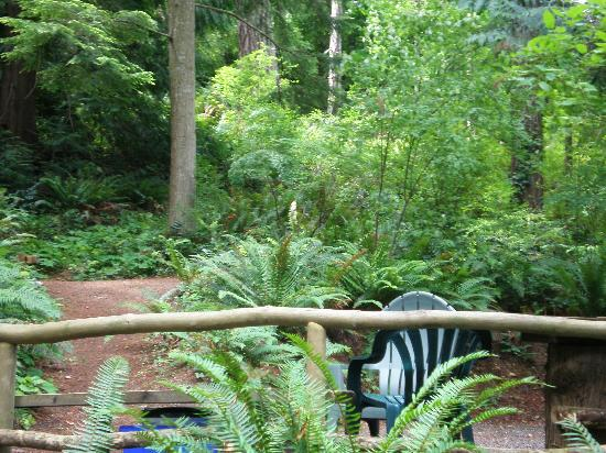 Garden Faire Campground: Overlooking a Campsite