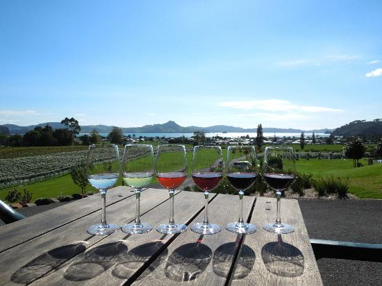 Mercury Bay Estate: A great flight of wine, to match a terrific view!