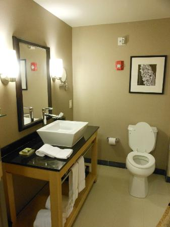 Cambria Hotel & Suites Rapid City: Well appointed bath