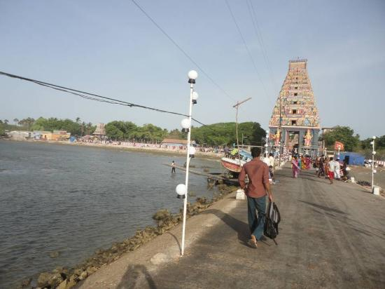 Naga Pooshani Ambal Kovil: WALK WAY TO REACH TEMPLE