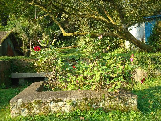 Pousada Shamballah: Jardim da Pousada - Um sossego 