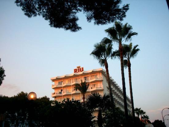 Hotel Riu Festival: 2011/08-94