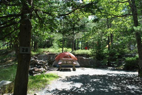 Somes Sound View Campground: Site #28