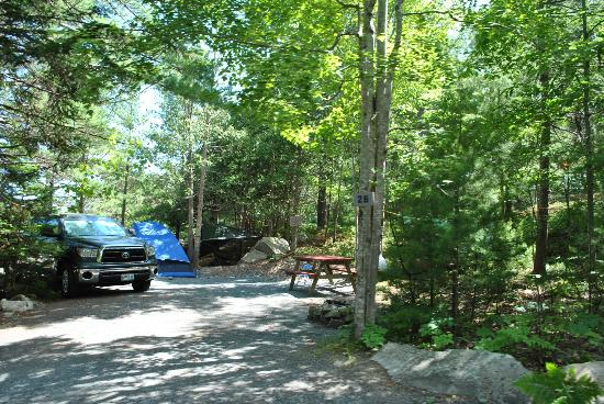Somes Sound View Campground: Site #26