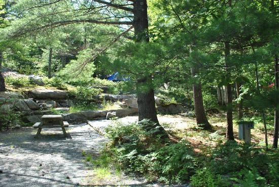 Somes Sound View Campground: Site #24