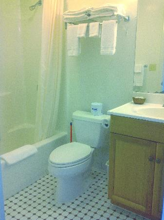 Townliner Motel: nice bathroom