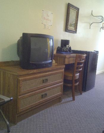 Townliner Motel: tv area
