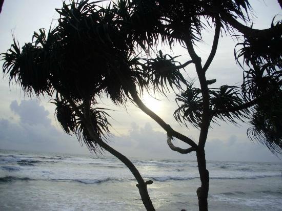 Vendol Resort - Wadduwa: View