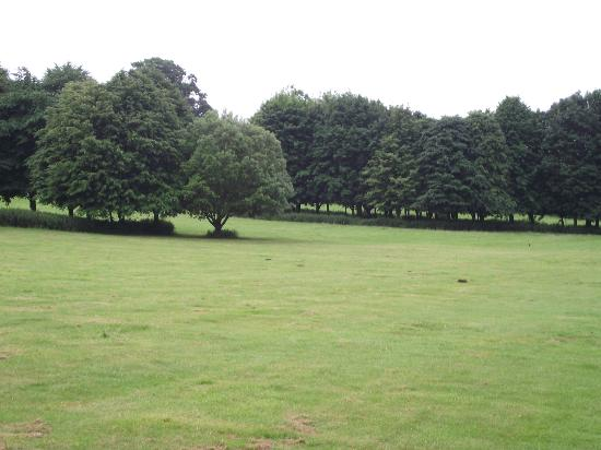 Hitchin Priory: some of the fantastic grounds