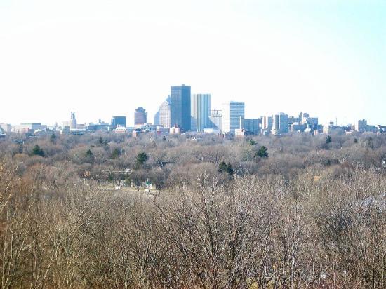 Cobbs Hill Park: Cobbs Hill