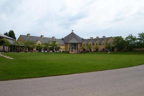 Peller Estates Winery Restaurant: view from the vineyard to the winery