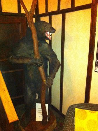 The Bear Hotel: Beware of the Bear