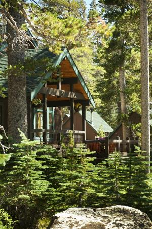 Tamarack Lodge and Resort: Tamarack Cabin