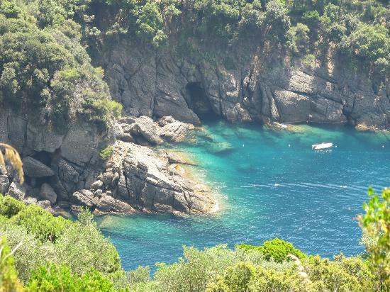 I Maggiolini : sentiero nel Parco di Portofino