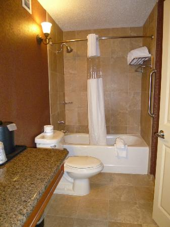 BEST WESTERN PLUS Savannah Historic District: Shower