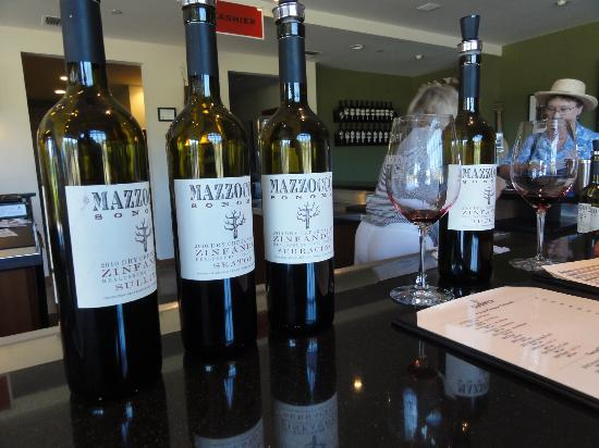 Mazzocco Sonoma: My favorite Zinfandel is right in front of you.... Seaton.