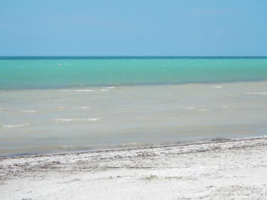 Holbox Hotel Casa las Tortugas - Petit Beach Hotel & Spa: Playa y Mar Turquesa!