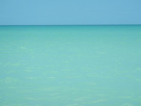 Holbox Hotel Casa las Tortugas - Petit Beach Hotel & Spa : Simplemente el paraiso!