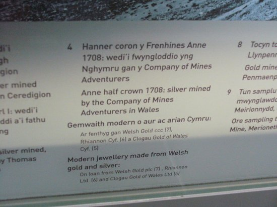 Swansea Museum: to go with the coins