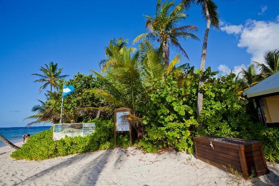 鵜鶘灣棕櫚飯店照片