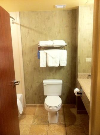Embassy Suites by Hilton Albuquerque - Hotel & Spa: bathroom