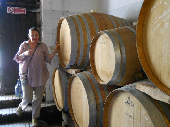 Fattoria San Donato: Wine Making