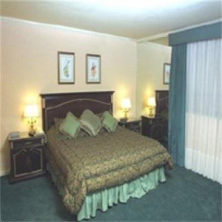 Santa Rosa Suites : Guest Room