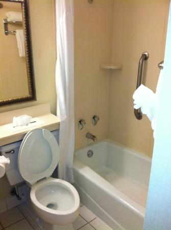 Holiday Inn Charlottesville-Monticello: typical but clean bathroom