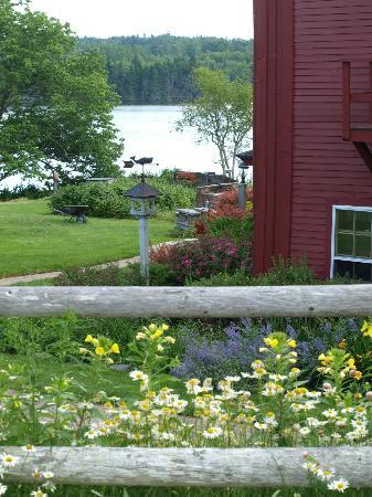 Pilgrim's Inn: Pilgrims Inn Deer Isle Maine