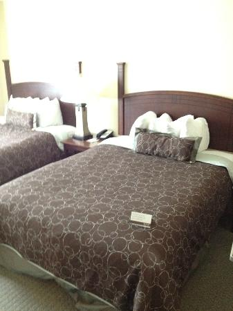 Staybridge Suites: Two double beds