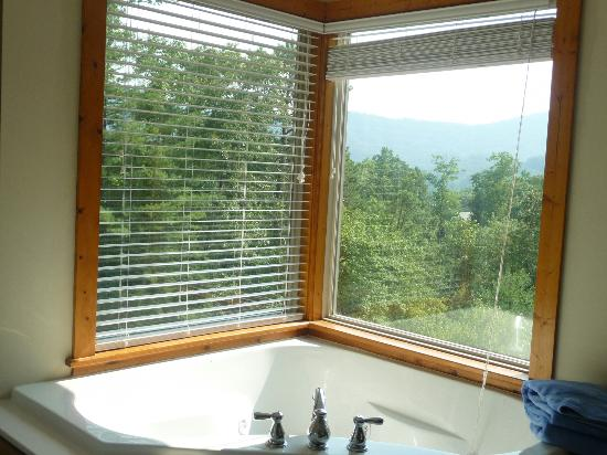 Dogwood Cabins at Trillium Cove: View from bathroom jacuzzi