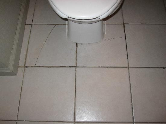 Rodeway Inn: Leaking toilet, cracked and loose tiles, water from toilet on floor