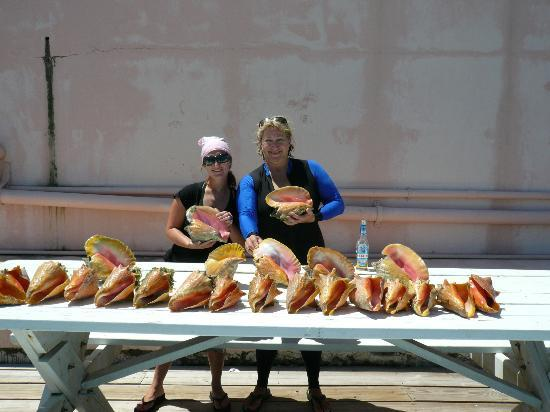 Club Peace & Plenty Exuma Island: Conchs