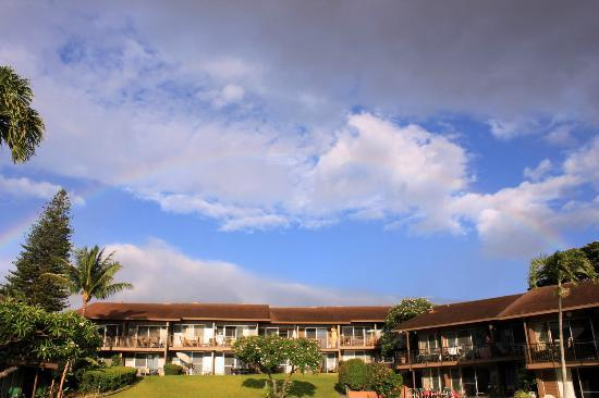 Polynesian Shores Condominium Resort: Rainbow Everyday